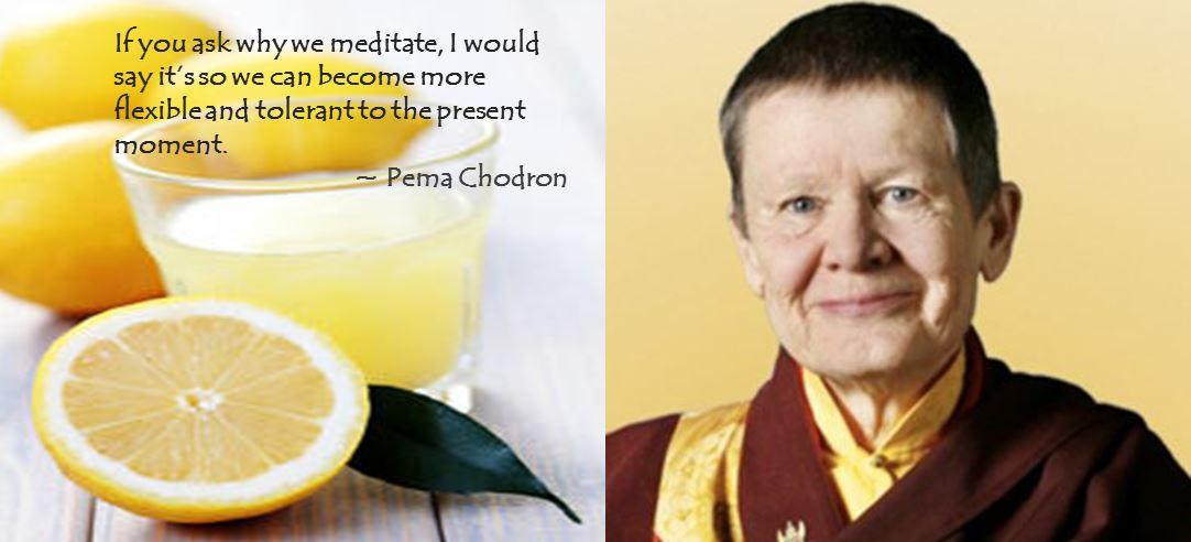 Lemons_Pema Chodron_EN