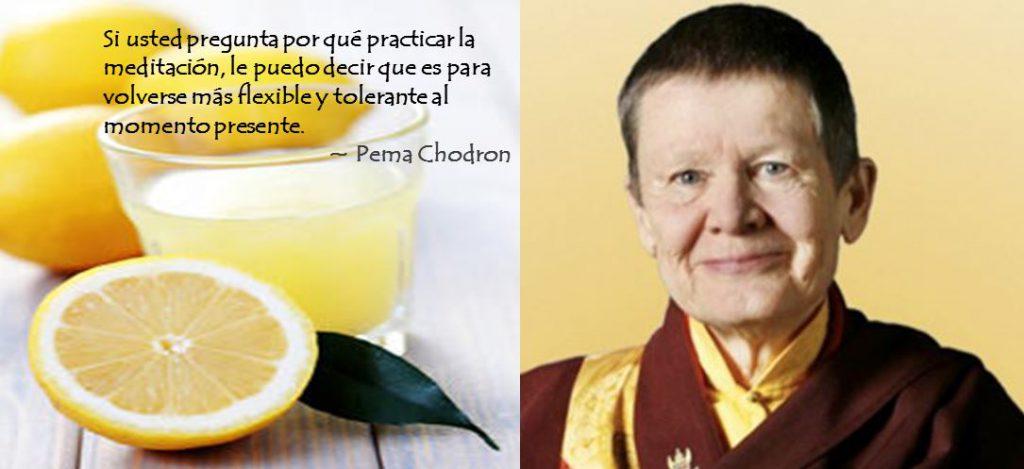 Lemons_Pema Chodron_ES3
